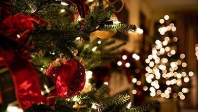 Photo of Fast Facts about Holiday Lighting: What You Need to Know